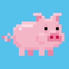 Activities of Piggs!