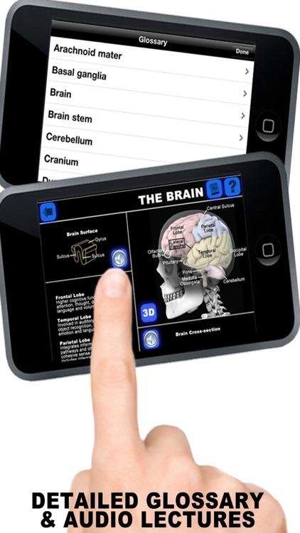 Anatomy 3D - Organs screenshot-4
