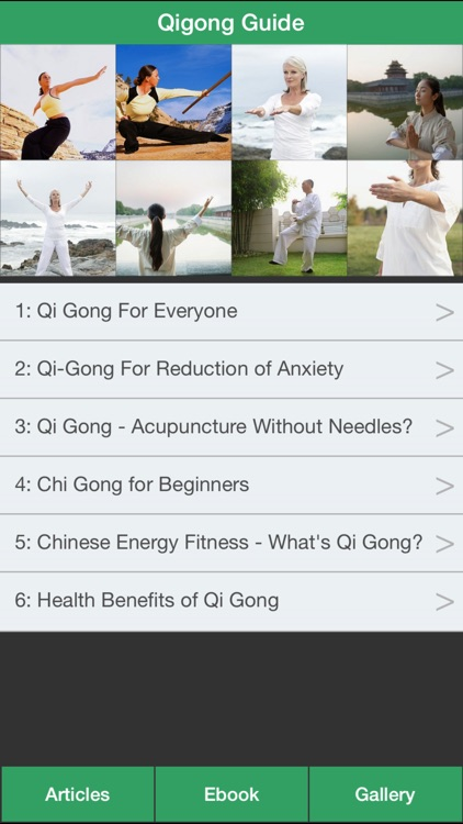Qigong Guide - Everything You Need To Know About Qi Gong ! screenshot-0