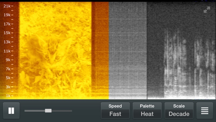 Spectrum Analyzer - Real Time Sound Frequency Analyzer screenshot-3