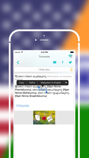 Offline Malayalam to English Language Dictionary on the App