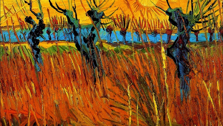 Art Wallpaper Van Gogh HD screenshot-4