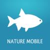 Fische 2 PRO - Das Nachschlagewerk für Nordsee, Ostsee und die Binnengewässer