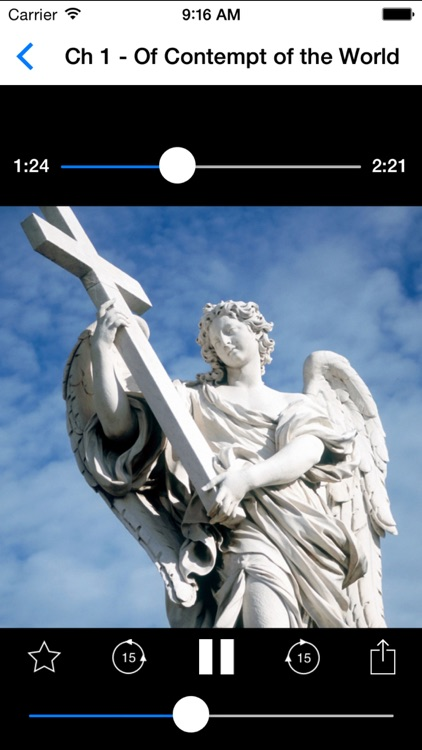 Audio Catholic Books screenshot-3