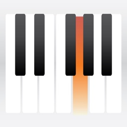 Piano Technical Work