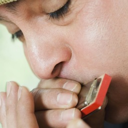 How To Play Harmonica - Video Guide