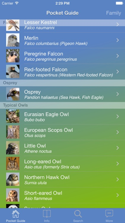 Pocket Guide UK Birds of Prey screenshot-2
