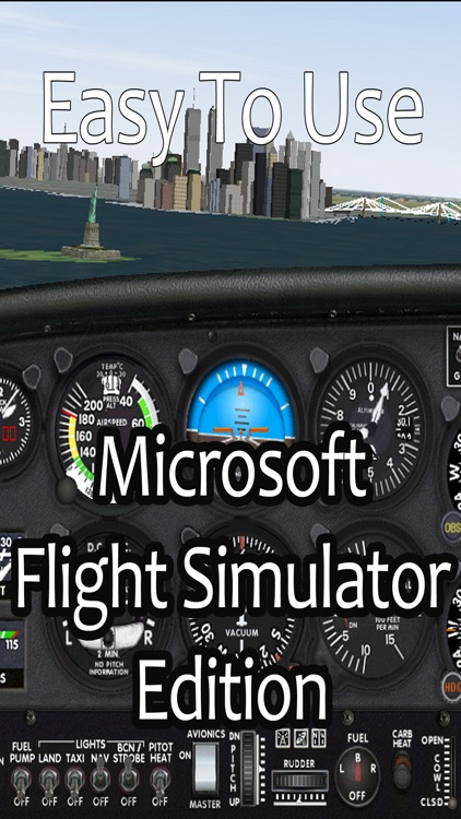 Easy To Use - Microsoft Flight Simulator Edition screenshot-0
