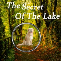Codes for Hidden Objects:The Secrets Of The Lake Hack