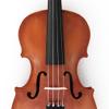 Violin Angelo