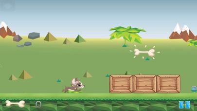Henry the Chihuahua Free screenshot three