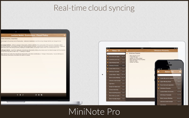 MiniNote Pro Screenshot 4