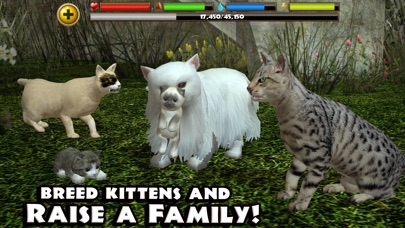 Stray Cat Simulator screenshot two