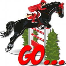 Activities of Show Jumping Race