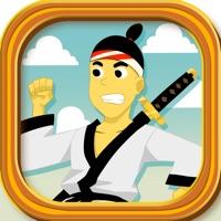 Codes for Ninja Shadow Warrior vs Samurai Soldier: Dojo Seige Power Fight Hack