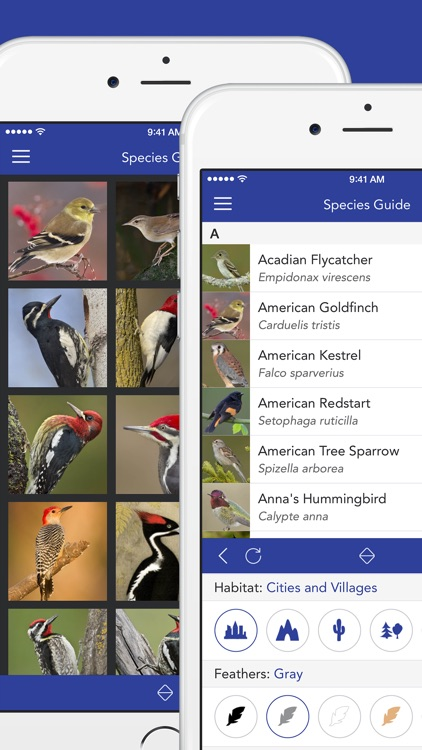 iKnow Birds 2 PRO - The Field Guide to the Birds of North America