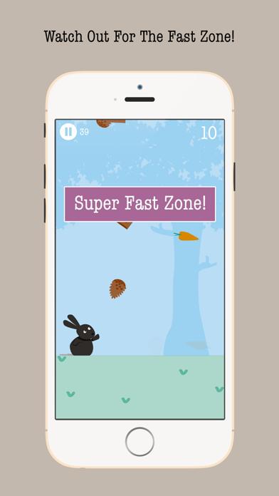 Carrot Rush By Bunny Box screenshot three