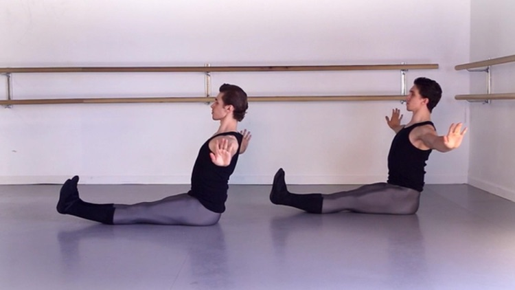 Ballet Elasticity screenshot-2