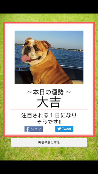 みんなのわんこ天気〜天気予報+犬写真で毎日に少しほっこり〜のおすすめ画像2