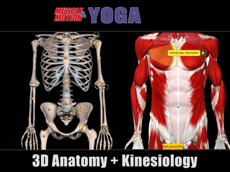 Muscle and Motion Yoga screenshot-3