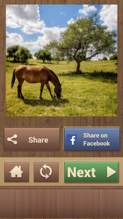 Horse Jigsaw Puzzles - Brain Training Games screenshot-4