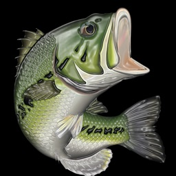 Virtual Bass Fishing 3D