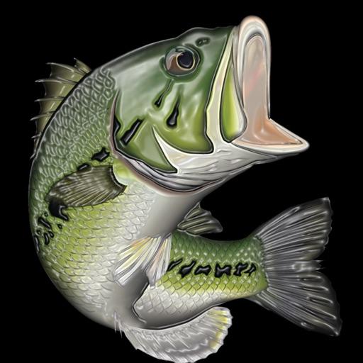 Virtual bass fishing 3d by kei shibata for Bass fishing 3d