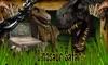Dinosaur Safari Unlocked TV
