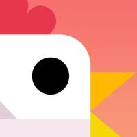 Codes for Chicken Scream Jump - Endless Arcade Game Hack