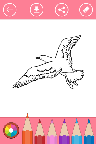 Bird Coloring Book for Kids: Learn to color & draw - náhled