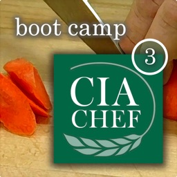 CIA Boot Camp 3