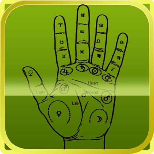 Palm Reader - The Fortune Teller