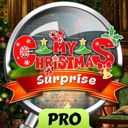 My Christmas Surprise - Hidden Object
