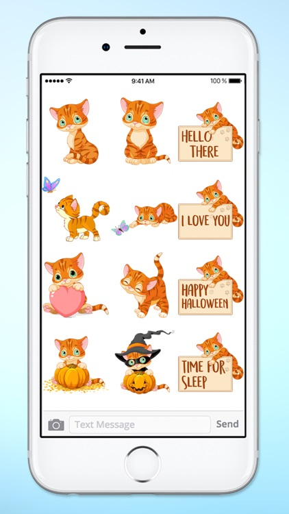 Cute Kitten Messages Sticker Pack