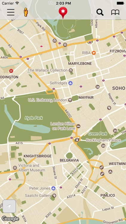 Maps Pro with Google Maps screenshot-3