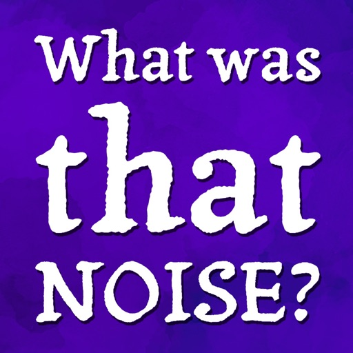 What Was That Noise?