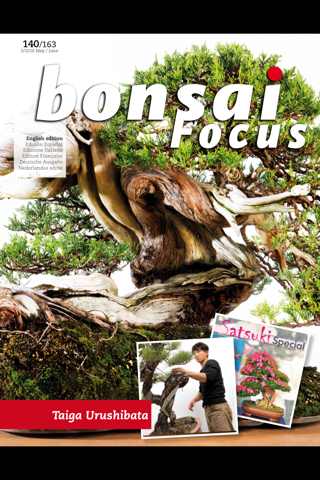 Bonsai Focus EN - náhled