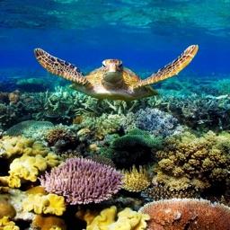 Australia Unesco World Heritage +
