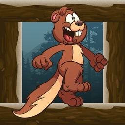 Squirrel Jump games : fun and jumping on the tree
