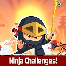 Activities of Ninja Swing Challenges!