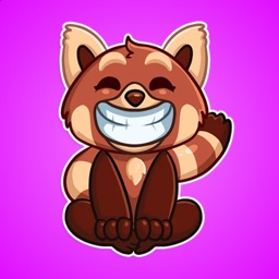 Brown Panda from Forest  Stickers