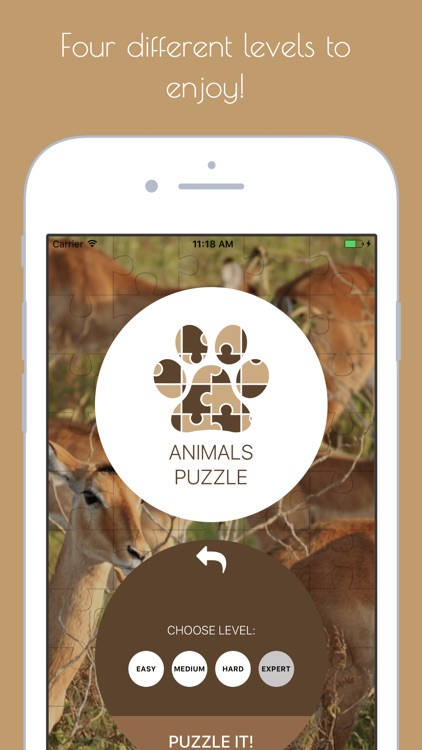 Animals Puzzle - Play with your favorite animals screenshot-4