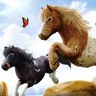Wonder Horses. Corridas de Cavalos icon