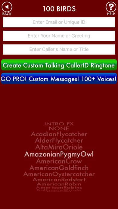 100BIRDS + RINGTONES Bird Calls Tweets Sounds screenshot two