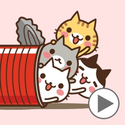 Animated cats in the can