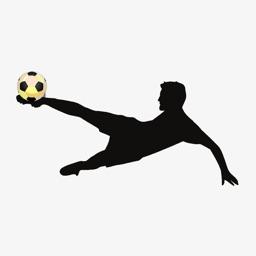 Soccer Trainer PRO - Learn Soccer Skills