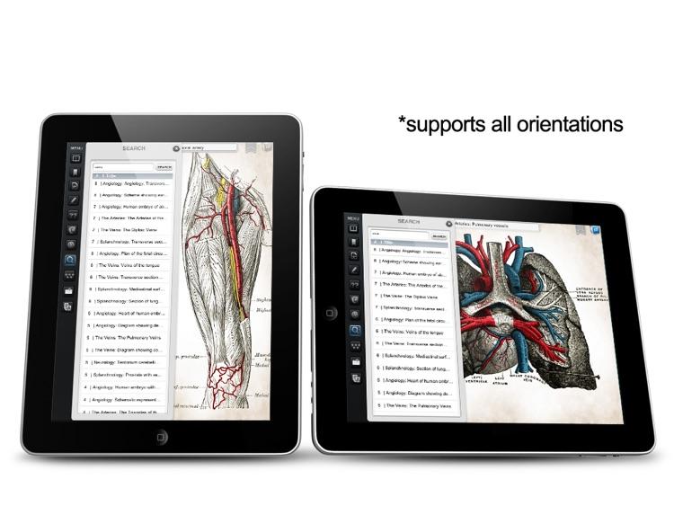 Gray's Anatomy Premium for iPad screenshot-3