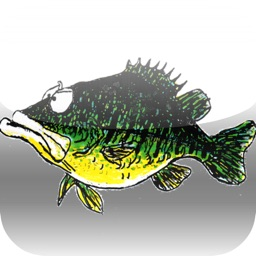 How To Fish And Do It Well