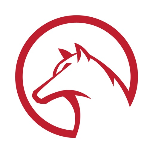 Metodo Lupi app logo