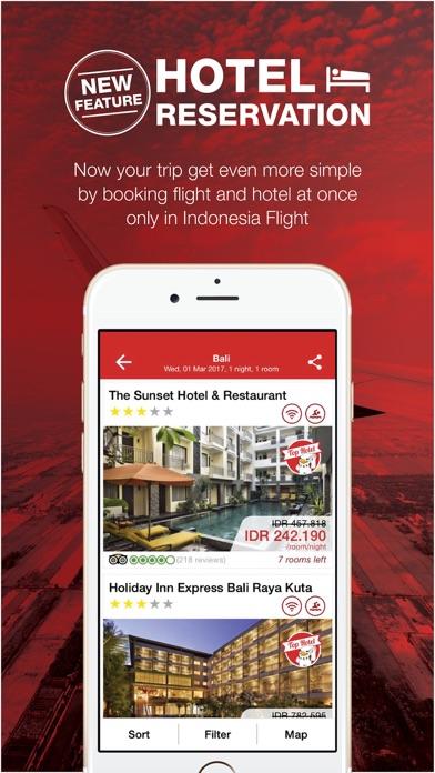 Indonesia Flight - Hotel iPhone
